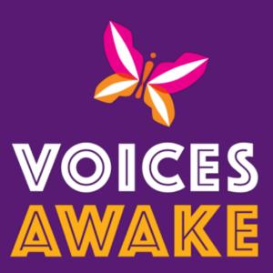 VoiceAwake-300x300